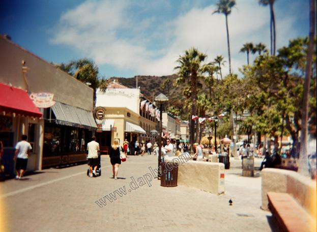 Holga on Catalina Island