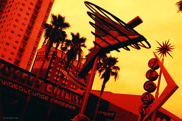 Red Scale Photography