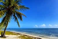 Island Time…